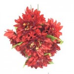 Хризантема. (красный)  1шт.