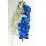 Орхидея (бело-синяя)  1шт.