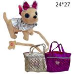 Чичи -лав на поводке танцует поёт в сумке