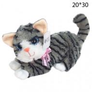 Котик лежачий Пучеглазый  большой