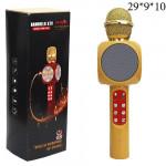 Интерактивный микрофон караоке с эффектами (USB,SD карта,Bluetooth) Светящийся