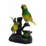 Попугай Двойной