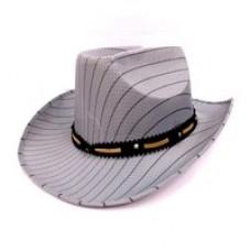 Шляпа в Полоску
